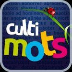A Noël, avec CULTIMOTS Histoire de France (App Iphone/pad), boostez votre mémoire et votre vocabulaire !