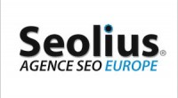 Seolius, 1 million de chiffre d'affaires en perspective